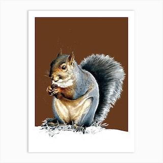 The Grey Squirrel On Roast Peach Art Print