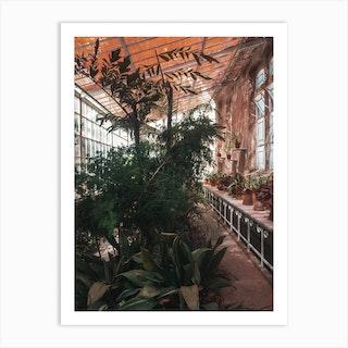 Palm Greenhouse Art Print