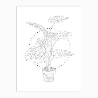 Monstera Botanical Line Drawing Art Print