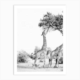 Kenya Trees Art Print