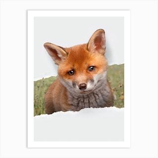 Baby Fox Torn Paper Art Print