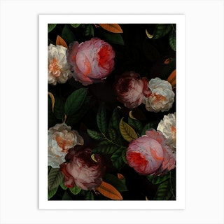 Antique Jan Davidsz De Heem Roses Night Garden Art Print