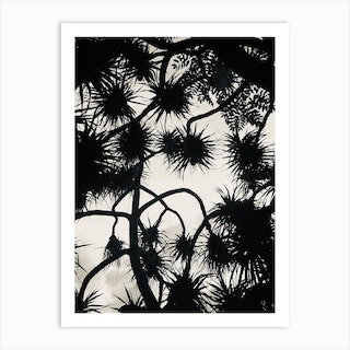 Branches And Shadows Art Print