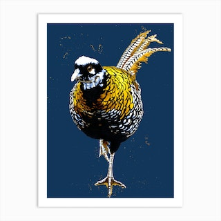 The Reeves Pheasant Art Print