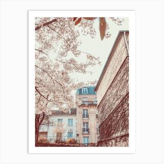 Flowers Corner In Paris Art Print