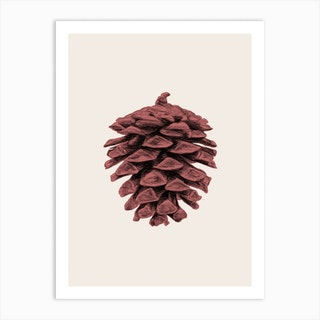 Red Pine Cone Art Print