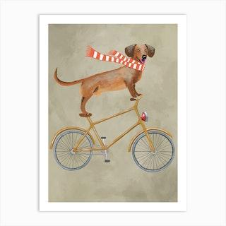 Dachshund On Bicycle With Sjawl Art Print