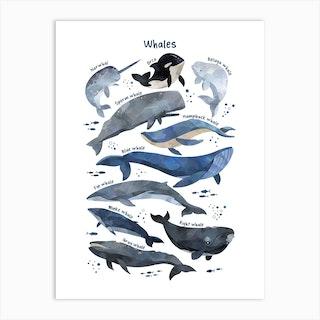 Watercolour Whales Art Print