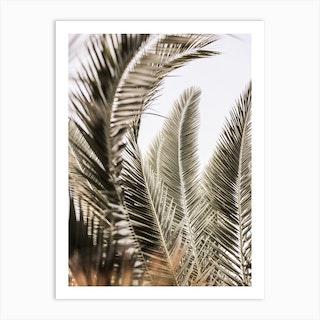Palm Love Art Print