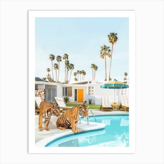 Tigers At The Pool Art Print