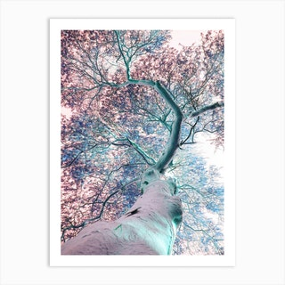 Fever Tree Art Print
