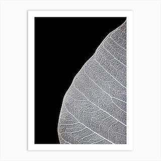 Veins Of Life 1 Black And White Art Print