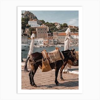 Mule On Hydra Greece Art Print