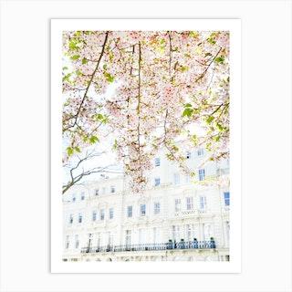 White London Blossom Art Print