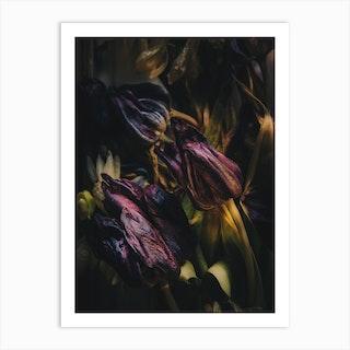Night Of Tulipdance Art Print