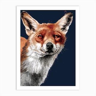 The Fox 2 Art Print