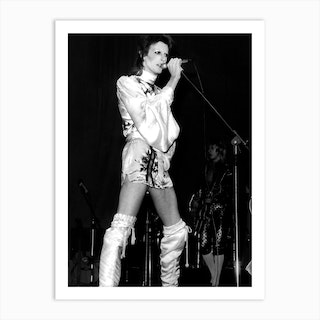 David Bowie On Stage Art Print