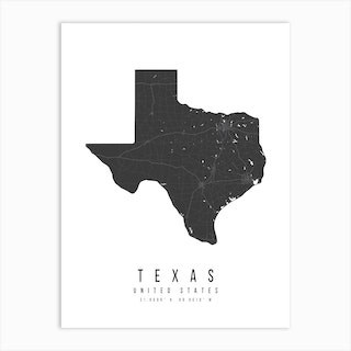 Texas Mono Black And White Modern Minimal Street Map Art Print