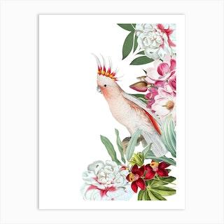 Cockatoo Vintage Floral  Art Print
