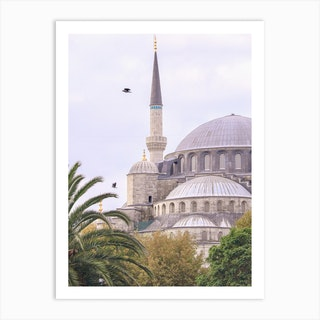 Istanbul Blue Mosque Art Print
