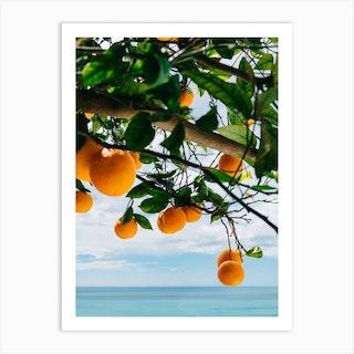 Amalfi Coast Oranges IV Art Print