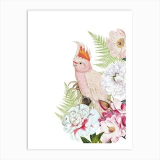 Pink Vintage Cockatoo Floral  Art Print
