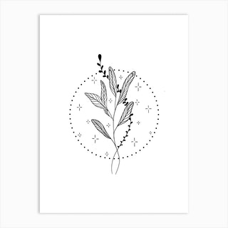 Botanical Magic 2 Art Print