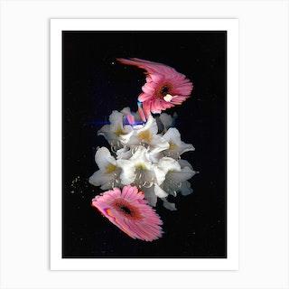 Flower Studies 12 Art Print