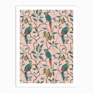 Peach Parrots Art Print