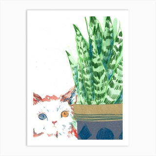 Odd Eyed Cat Art Print