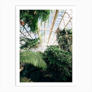 Cuninghams Botanic Garden Art Print
