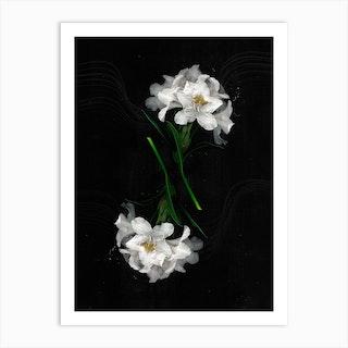 Flower Studies 1 Art Print