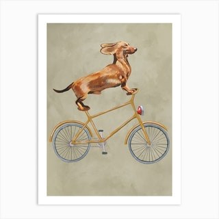 Dachshund On Bicycle Art Print