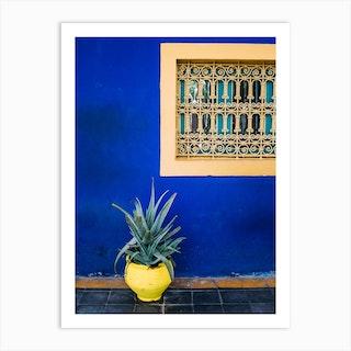 Agave On Blue Art Print