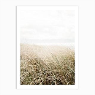 Dune Grass At The Beach Art Print Art Print