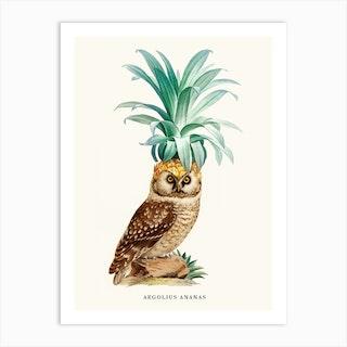 Pineapple Owl Vintage Art Print