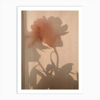 Abstract Flower Shadow 2 Art Print