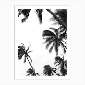 Coco Island 04 Art Print