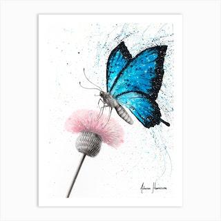 Sugar Butterfly Art Print
