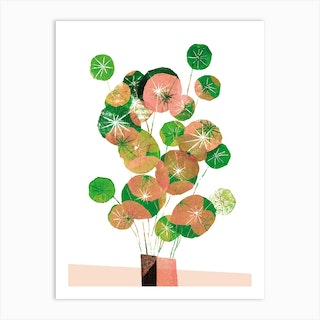Pilea In Green And Coral Art Print
