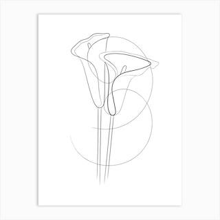 Calla Lillies Art Print