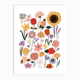 Flower Chart In White Art Print
