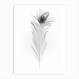 Black Peacock Feather 1 Art Print