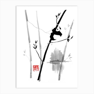 Panda In His Tree 2 Art Print