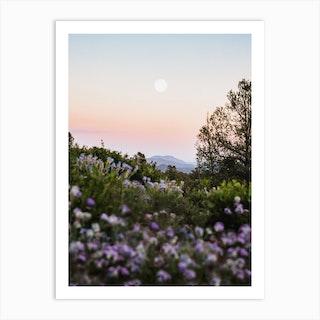 Full Moon Mountain Sunset With Purple Flowers Art Print