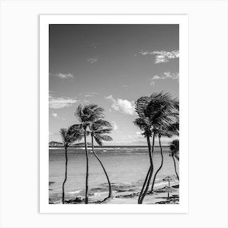 Amongst The Palm Trees Art Print
