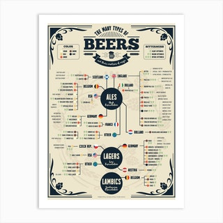 Beer Types Of The World Art Print