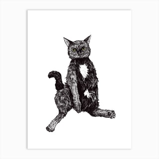 Chunky Cat Art Print