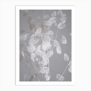 Honesty A Branch Of Dried Flowers Art Print