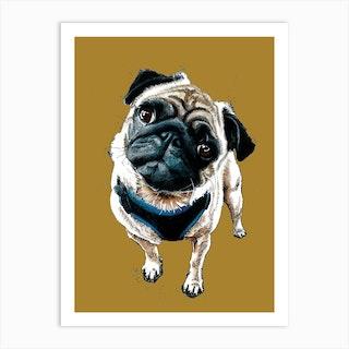 Teddy The Pug On Burnt Gold Art Print